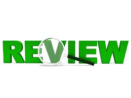 review essay代写